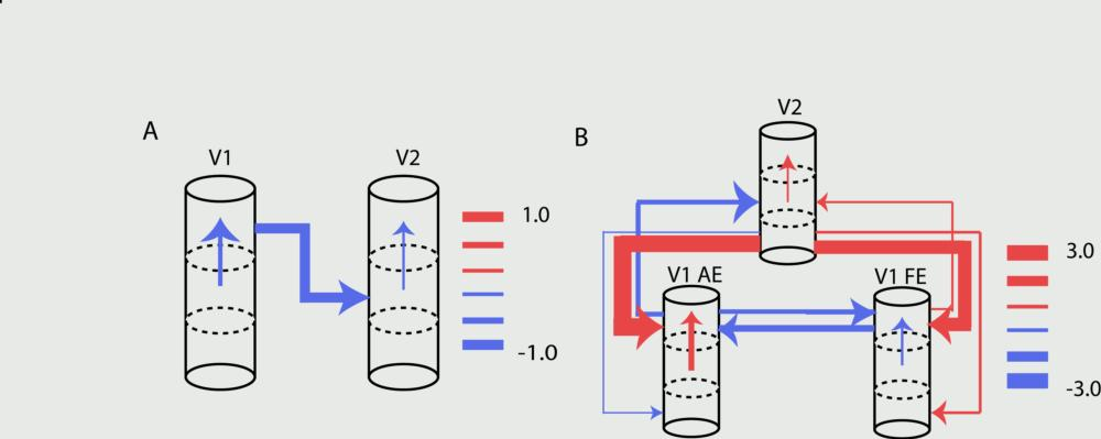 Supporting Image: figure2.jpg