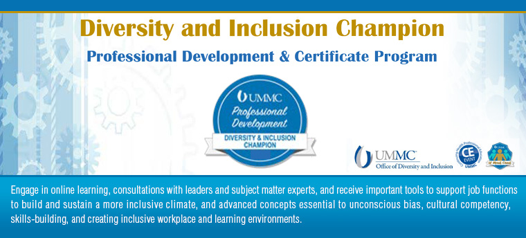 Diversity and Inclusion Champion Professional Development and Certificate Program